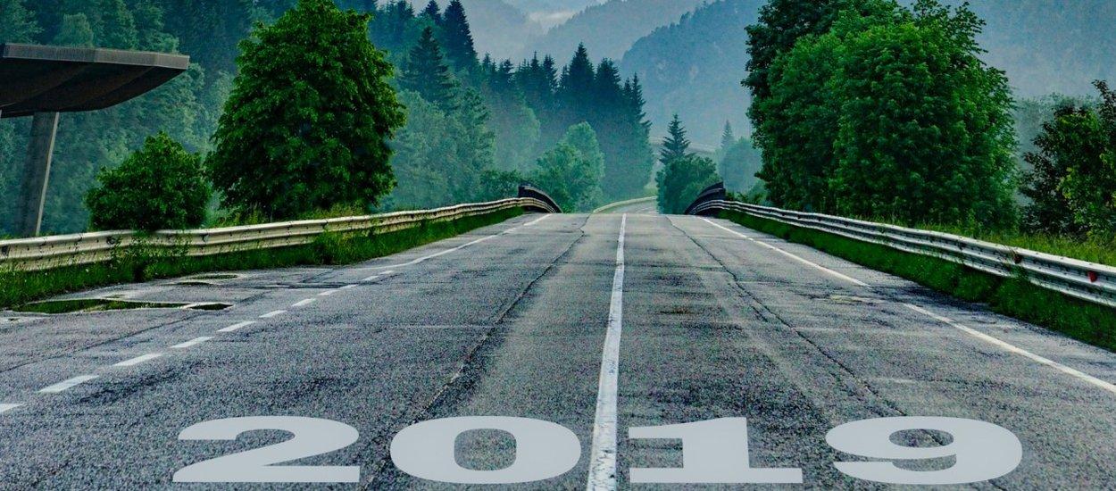 2019-start-line.jpg