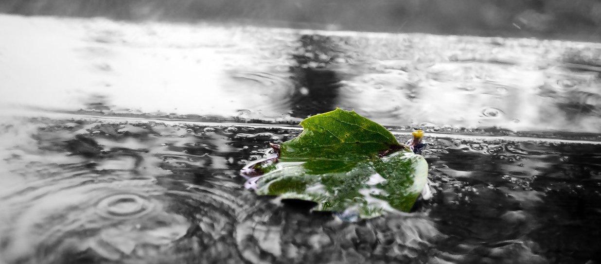 Stormwater_flowing_wide.jpg