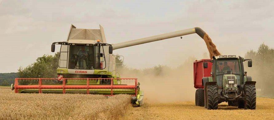 WheatFarming_wide.jpg