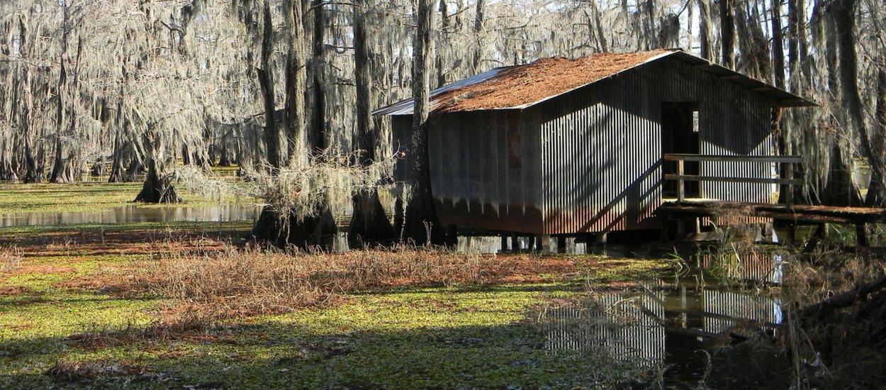 bayou-wide.jpg