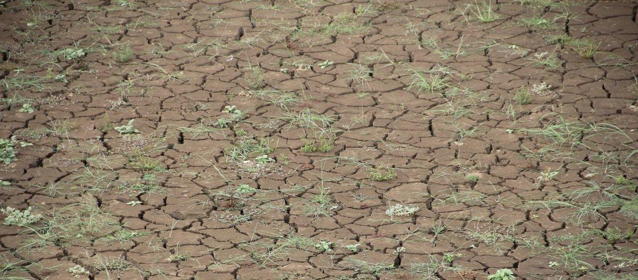 drought01-wide.jpg