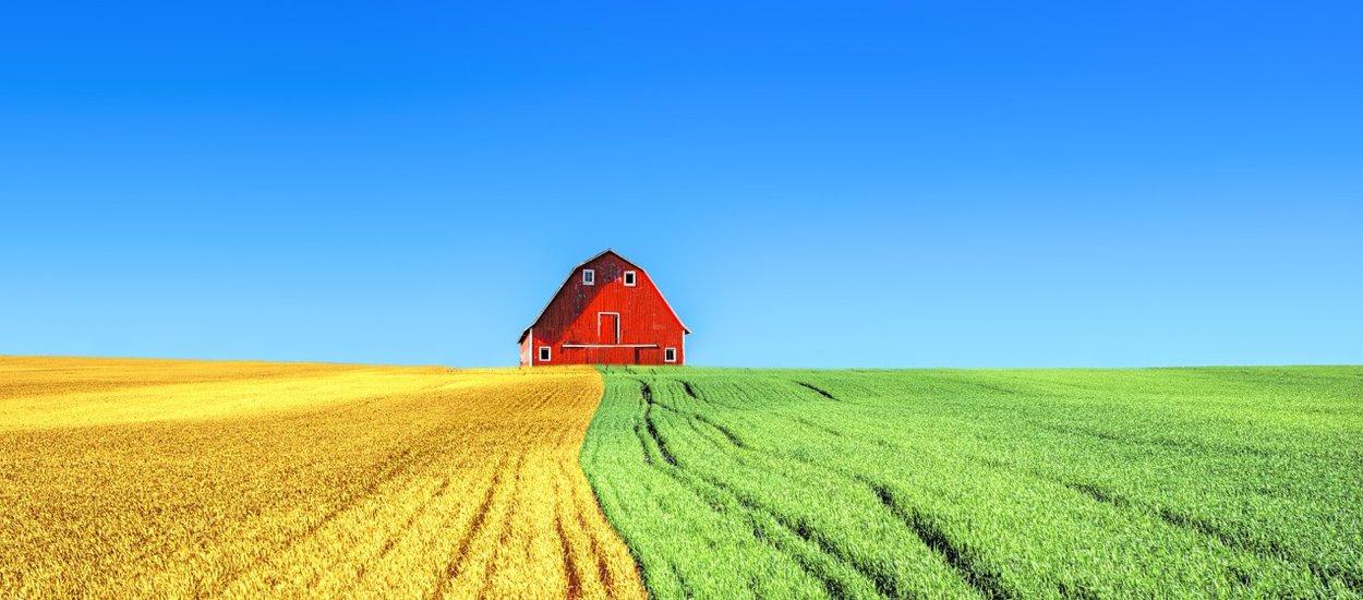 farm01-wide.jpg