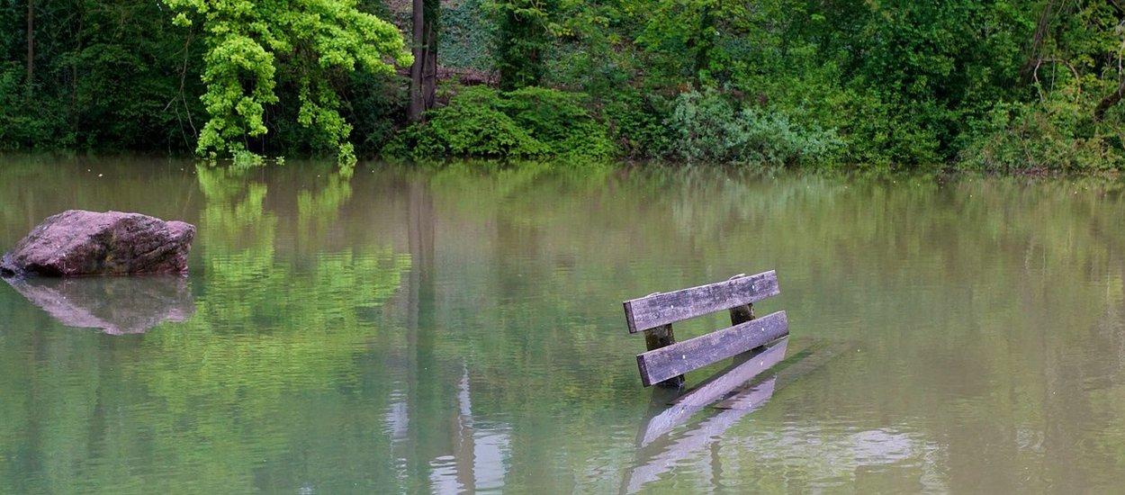 flood01-wide.jpg