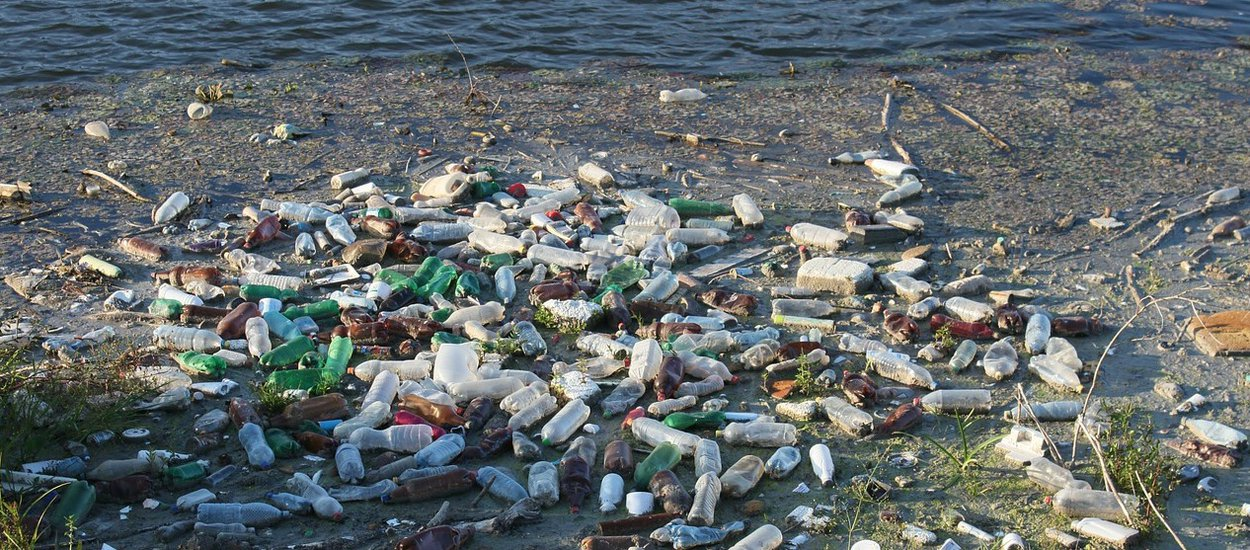 plastic-pollution-wide.jpg