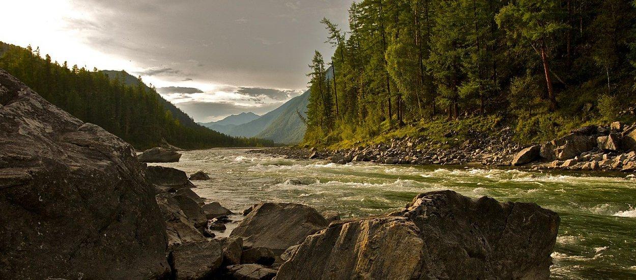 stream-rapids-mountains-forest-wide.jpg